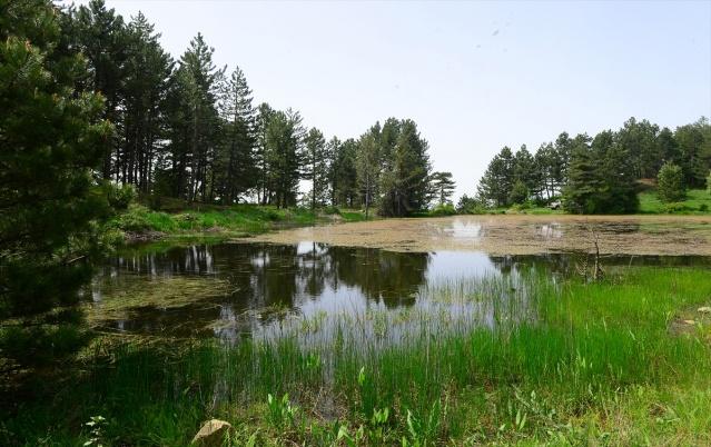 Ege Bölgesi'nin en yüksek dağları arasında yer alan Murat Dağı'nın Uşak ili Banaz ilçesi sınırları içinde bin 480 metre yükseklikte bulunan Sülüklü Göl doğa severler tarafından keşfedilmeyi bekliyor. Adını yaz aylarında köylülerin topladığı sülüklerden alan, üzeri su bitkileri kaplı yaklaşık 10 bin metre kare alana sahip Uşak'ın tek doğal gölü eşsiz güzelliği ile dikkat çekiyor.