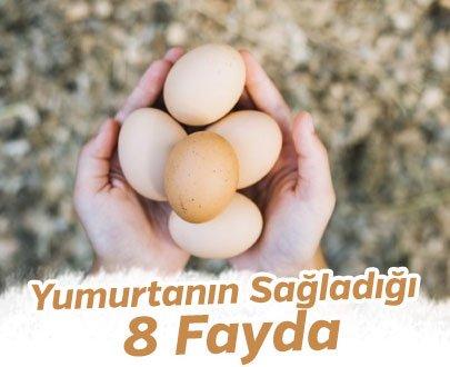 Yumurtanın Sağladığı 8 Fayda