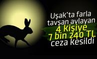 Uşak'ta far ışığıyla tavşan avına ceza
